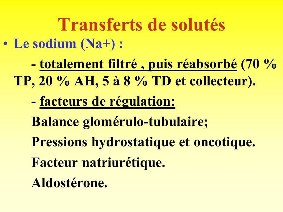 Transferts de solutés Le sodium (Na+) :