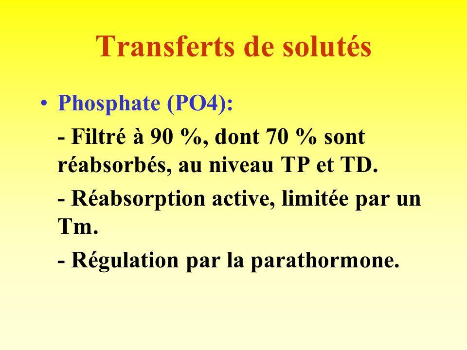 Transferts de solutés Phosphate (PO4):