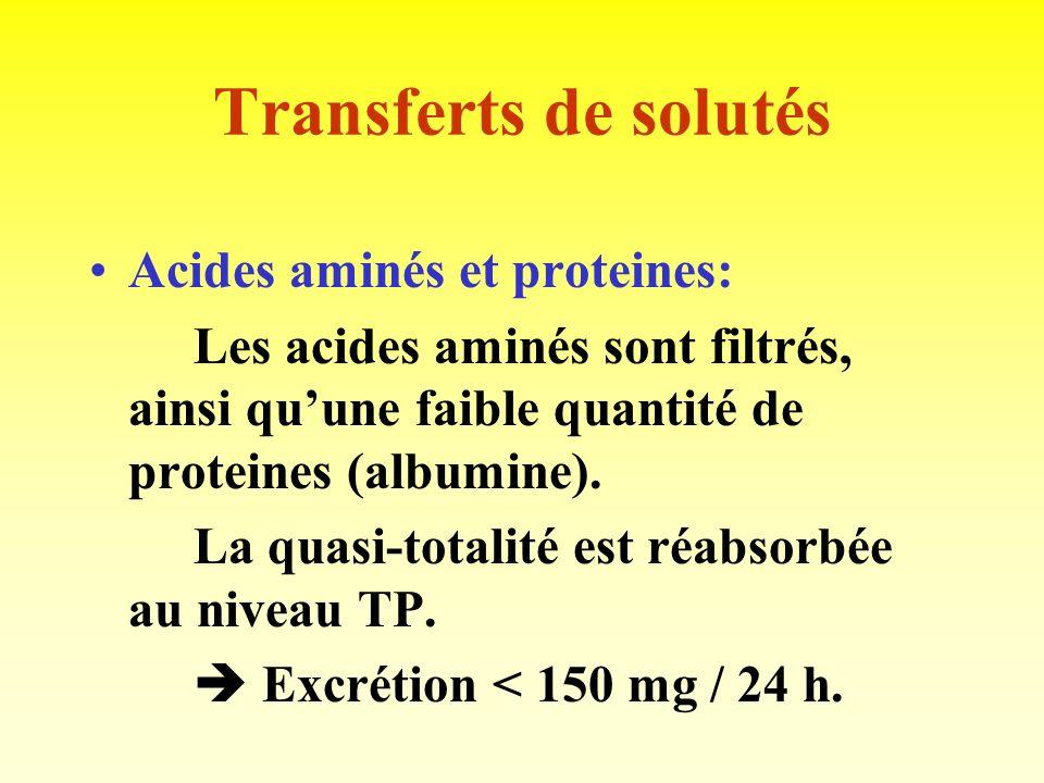 Transferts de solutés Acides aminés et proteines: