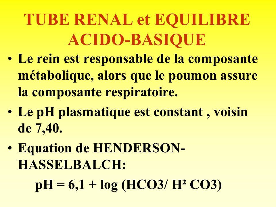 TUBE RENAL et EQUILIBRE ACIDO-BASIQUE