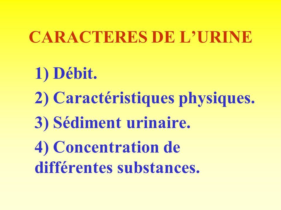 2) Caractéristiques physiques. 3) Sédiment urinaire.