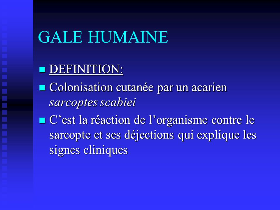 GALE HUMAINE DEFINITION: