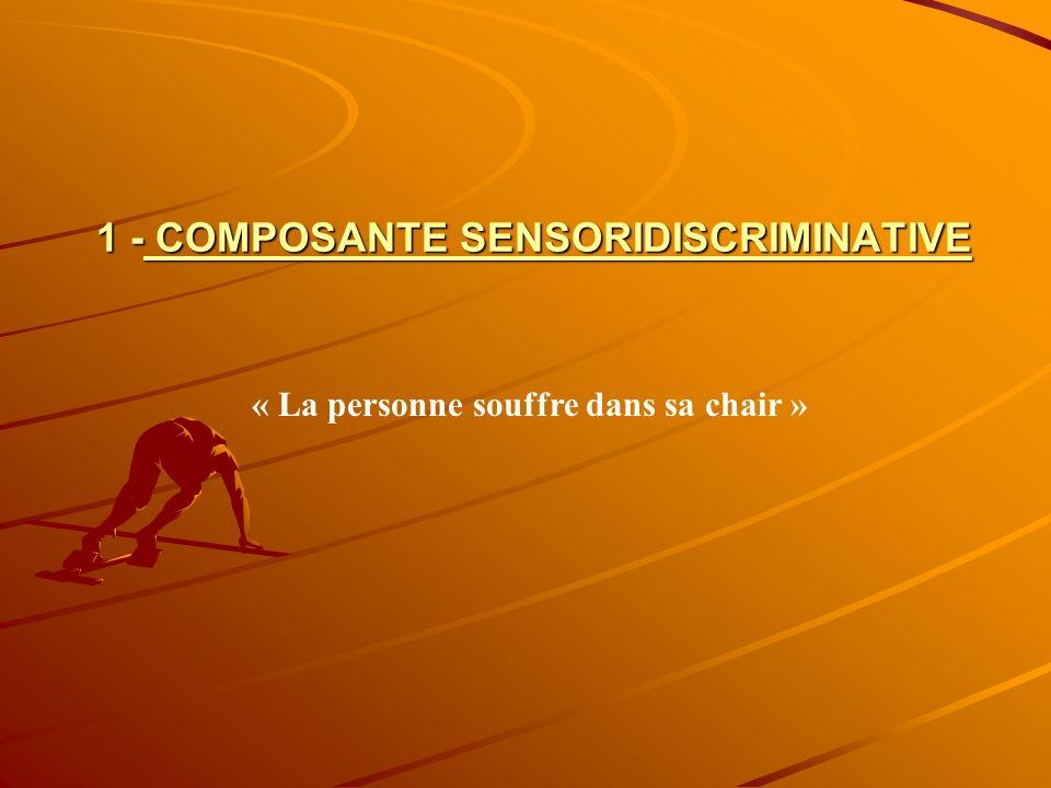 1 - COMPOSANTE SENSORIDISCRIMINATIVE