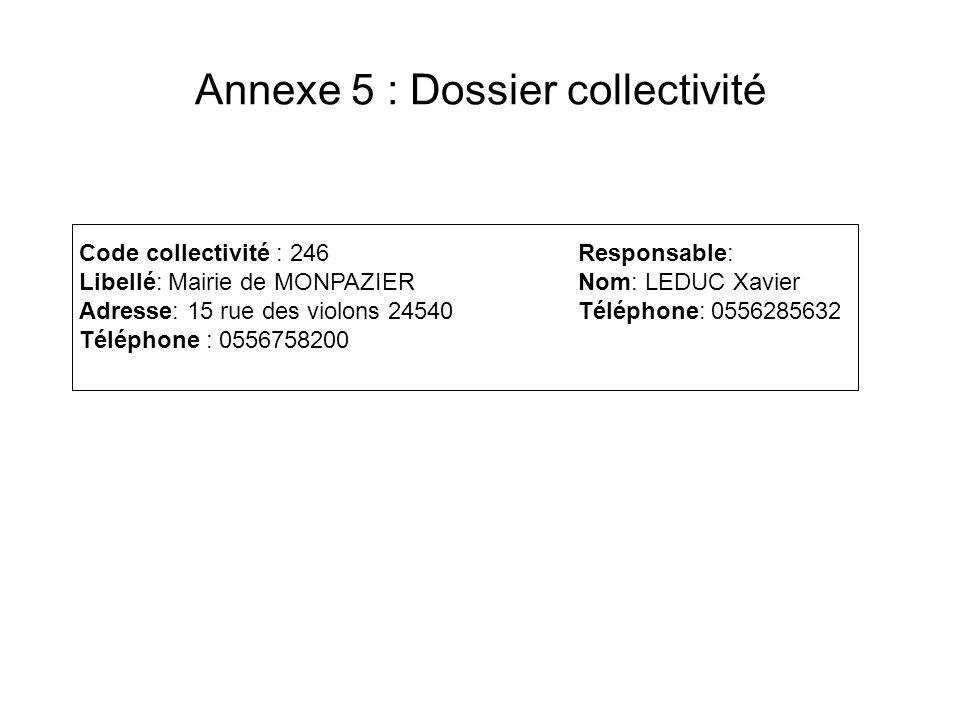 Annexe 5 : Dossier collectivité