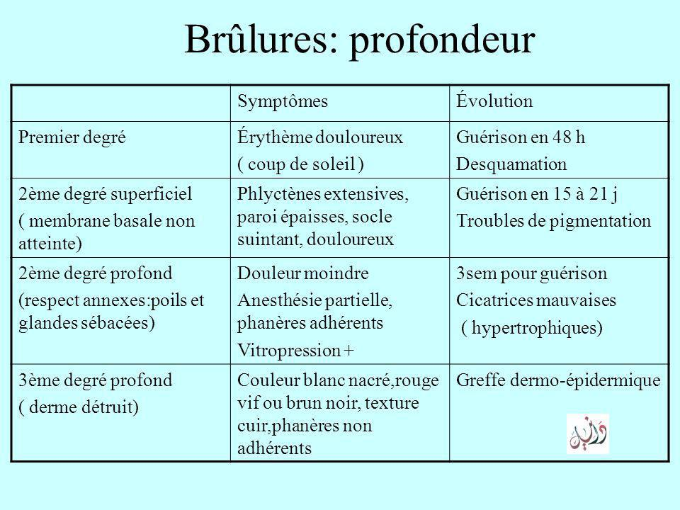 Les br lures graves introduction physiopathologie diagnostic positif ppt video online - Coup de soleil brulure 2eme degre ...