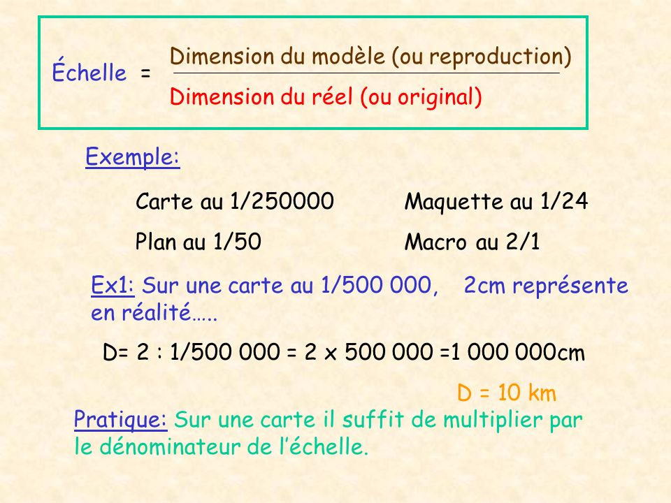 Dimension du modèle (ou reproduction)