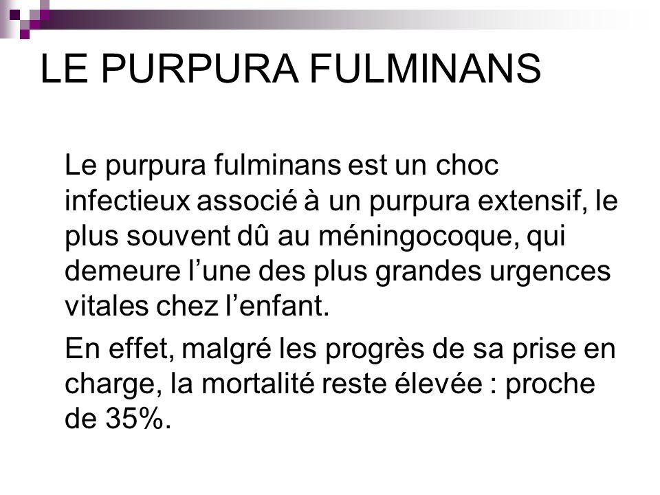 LE PURPURA FULMINANS