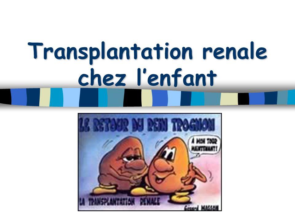 Transplantation renale chez l'enfant