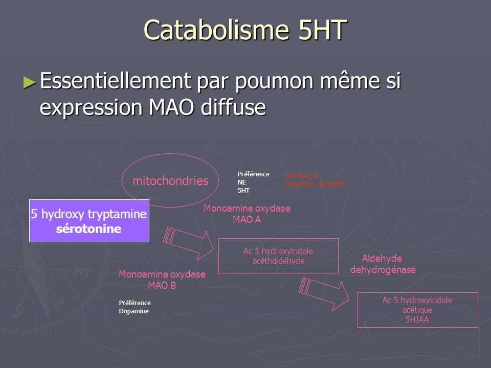 Catabolisme 5HTEssentiellement par poumon même si expression MAO diffuse. mitochondries. Préférence.
