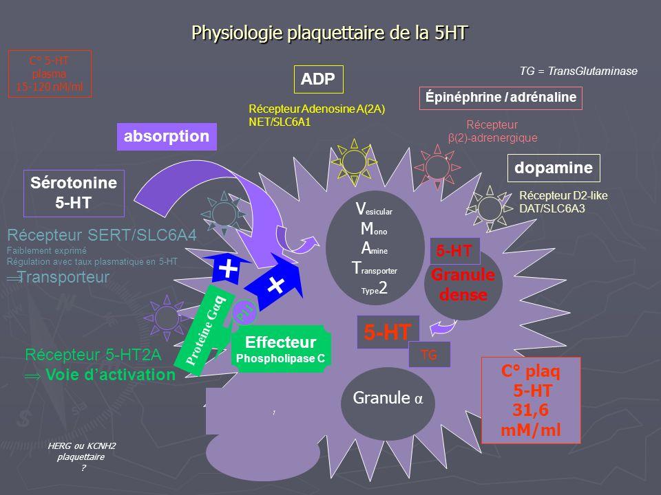 Physiologie plaquettaire de la 5HT