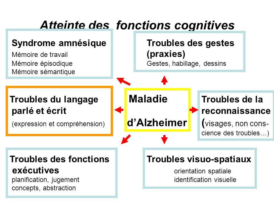 Atteinte des fonctions cognitives