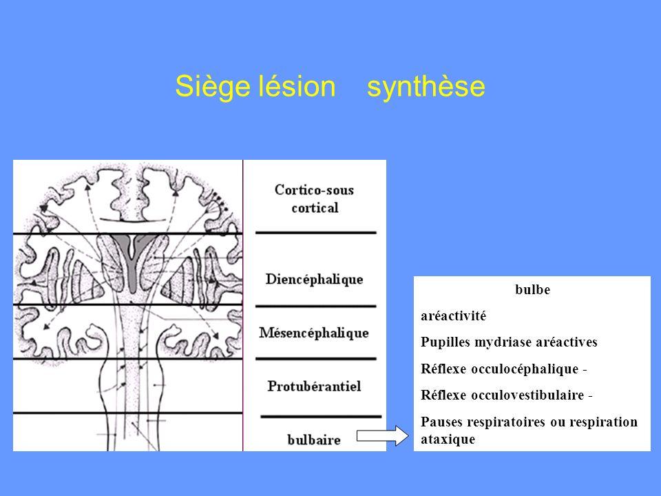 Siège lésion synthèse bulbe aréactivité Pupilles mydriase aréactives
