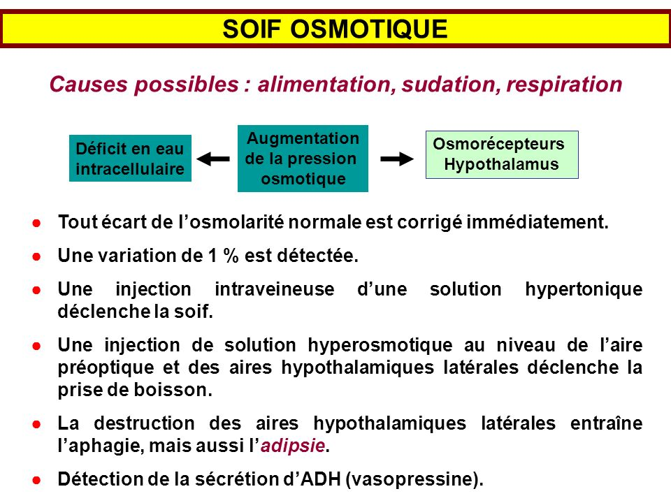 Causes possibles : alimentation, sudation, respiration