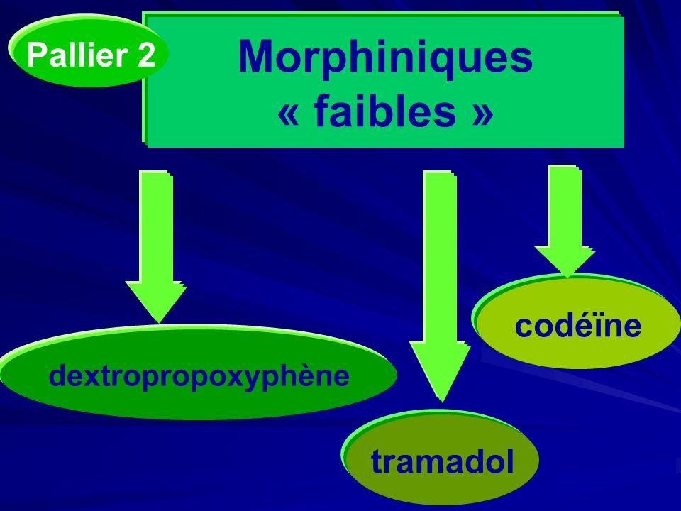 Morphiniques « faibles »