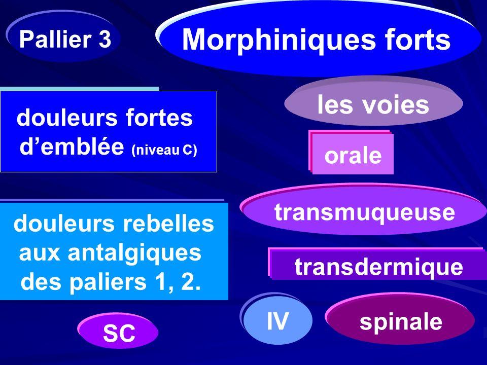 Morphiniques forts les voies Pallier 3 douleurs fortes