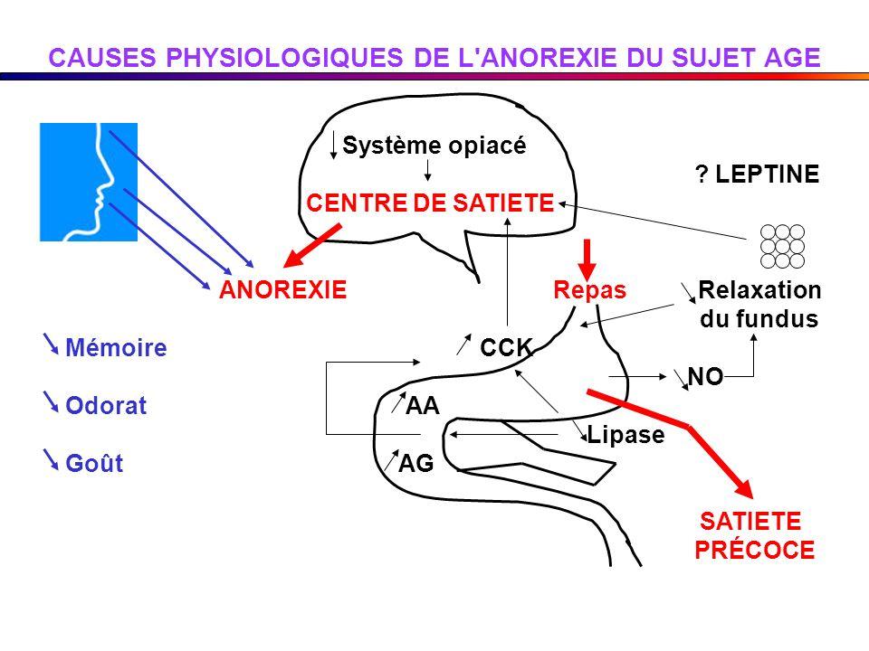 CAUSES PHYSIOLOGIQUES DE L ANOREXIE DU SUJET AGE
