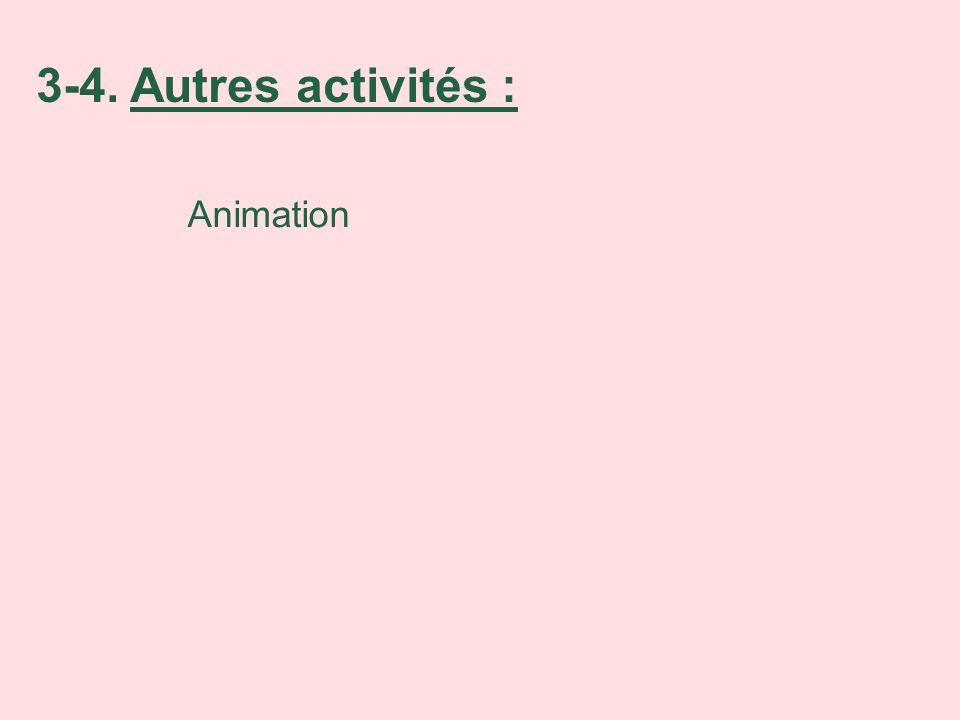 3-4. Autres activités : Animation