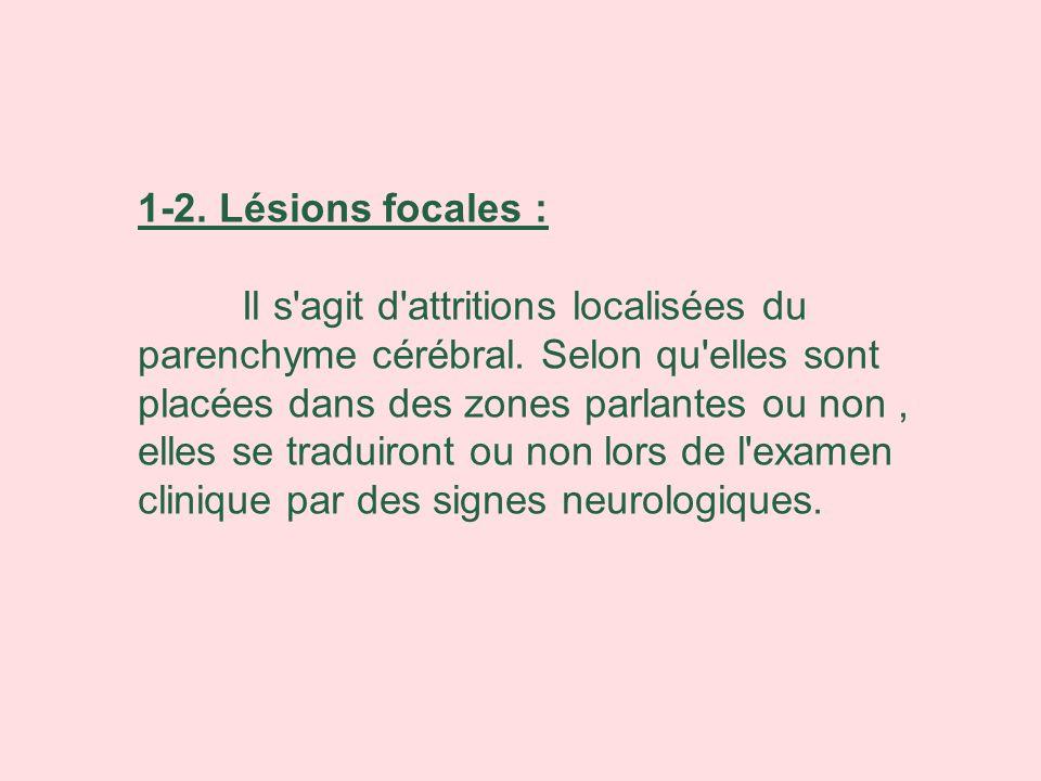 1-2. Lésions focales :