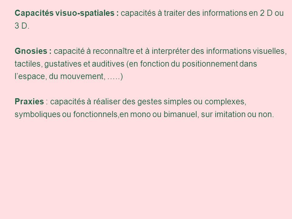 Capacités visuo-spatiales : capacités à traiter des informations en 2 D ou 3 D.
