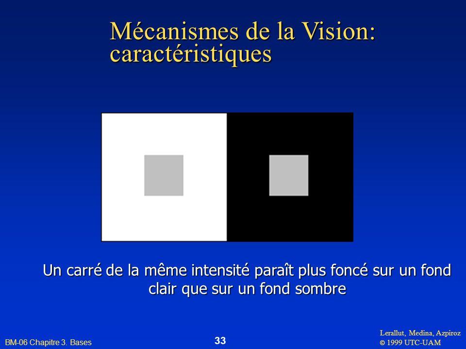 Mécanismes de la Vision: caractéristiques