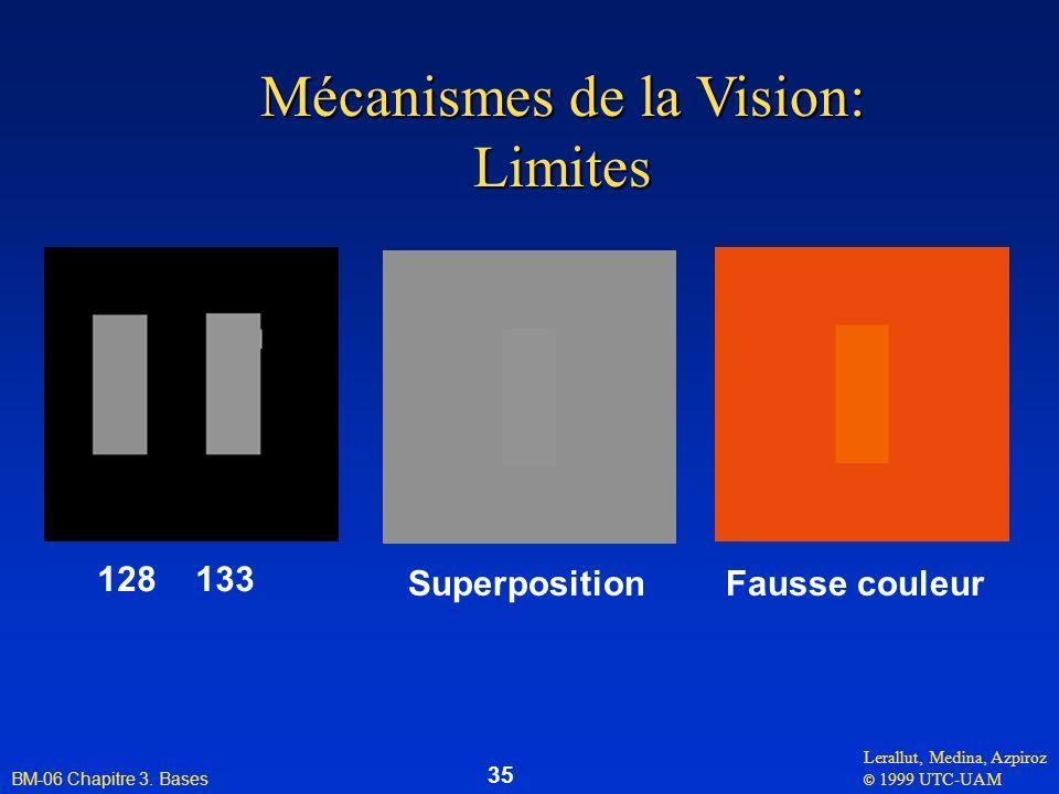 Mécanismes de la Vision: