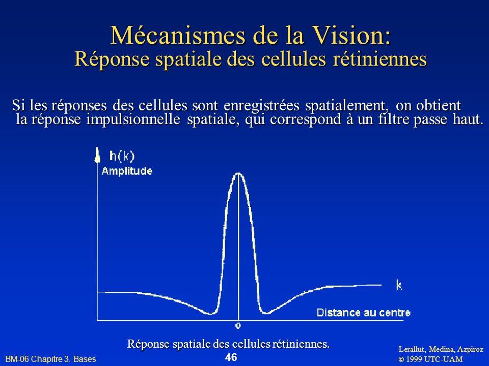 Mécanismes de la Vision: Réponse spatiale des cellules rétiniennes