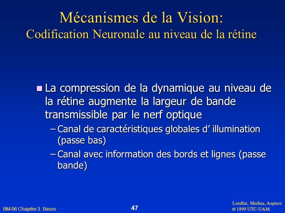 Mécanismes de la Vision: Codification Neuronale au niveau de la rétine