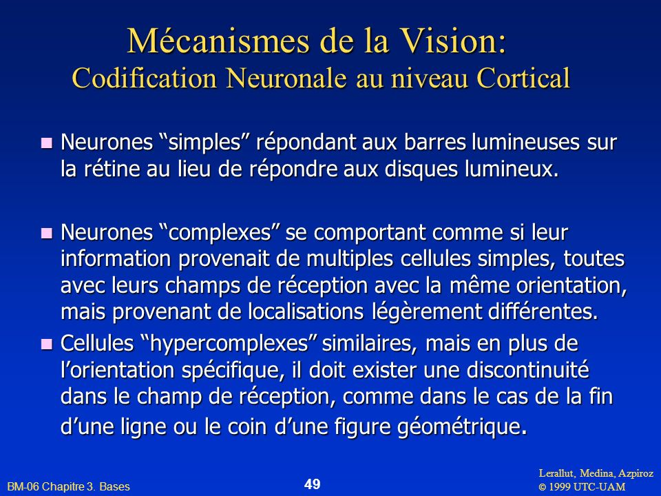 Mécanismes de la Vision: Codification Neuronale au niveau Cortical