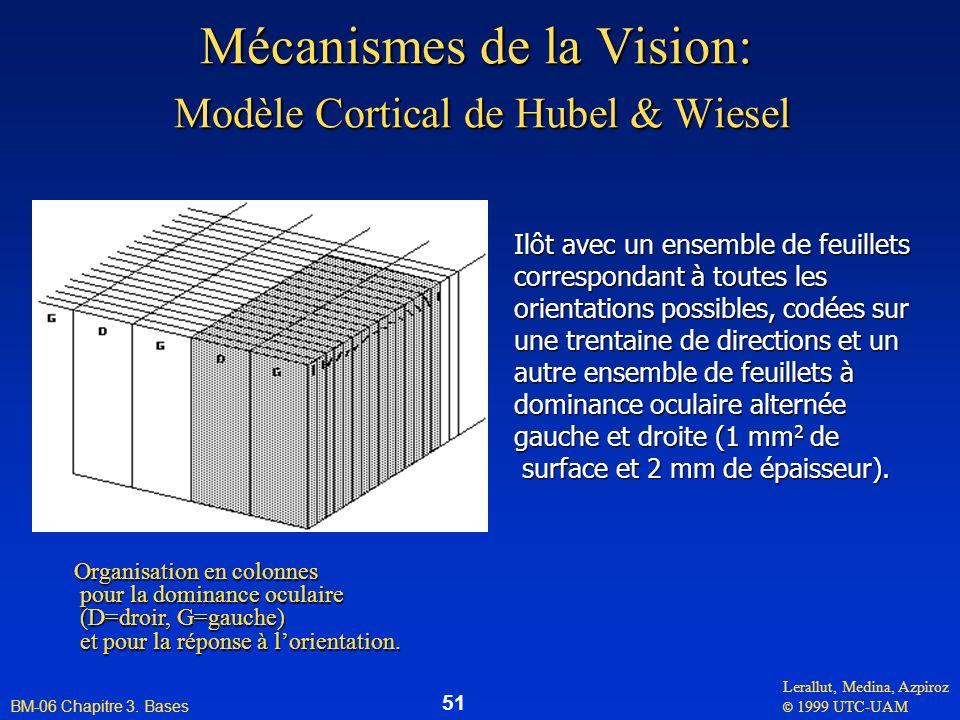 Mécanismes de la Vision: Modèle Cortical de Hubel & Wiesel
