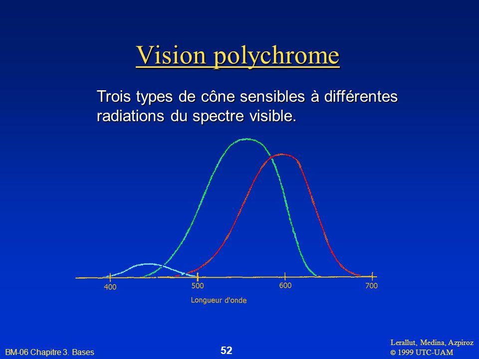 Vision polychrome Trois types de cône sensibles à différentes