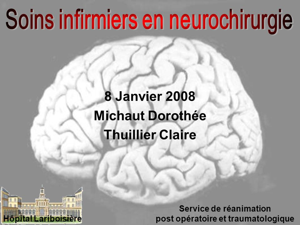 8 Janvier 2008 Michaut Dorothée Thuillier Claire