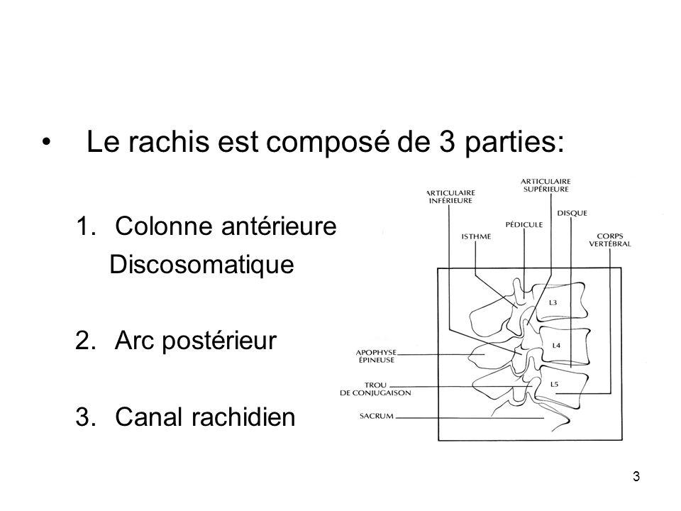 Le rachis est composé de 3 parties: