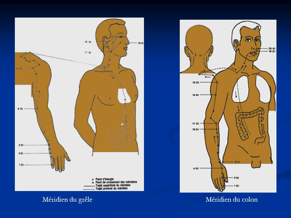 Méridien du grêle Méridien du colon