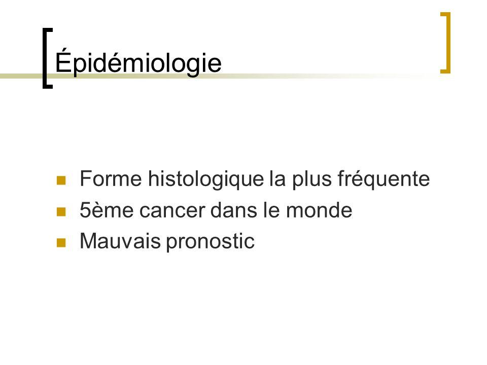 Épidémiologie Forme histologique la plus fréquente