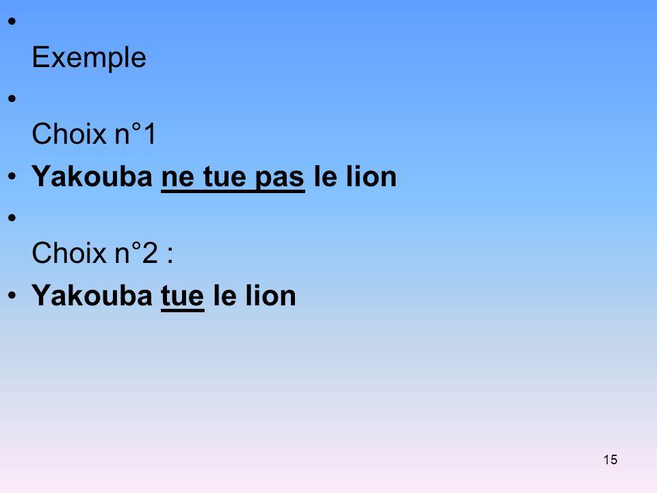 Exemple Choix n°1 Yakouba ne tue pas le lion Choix n°2 : Yakouba tue le lion
