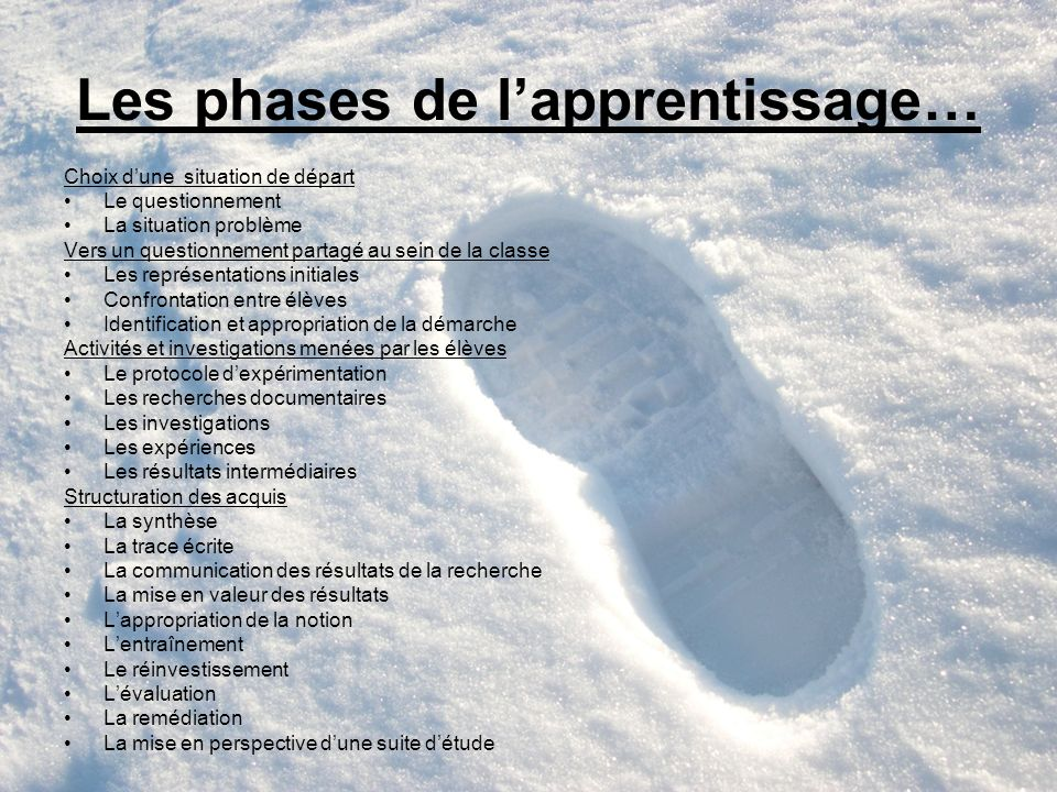 Les phases de l'apprentissage…