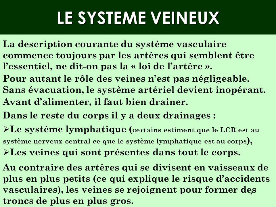 LE SYSTEME VEINEUX