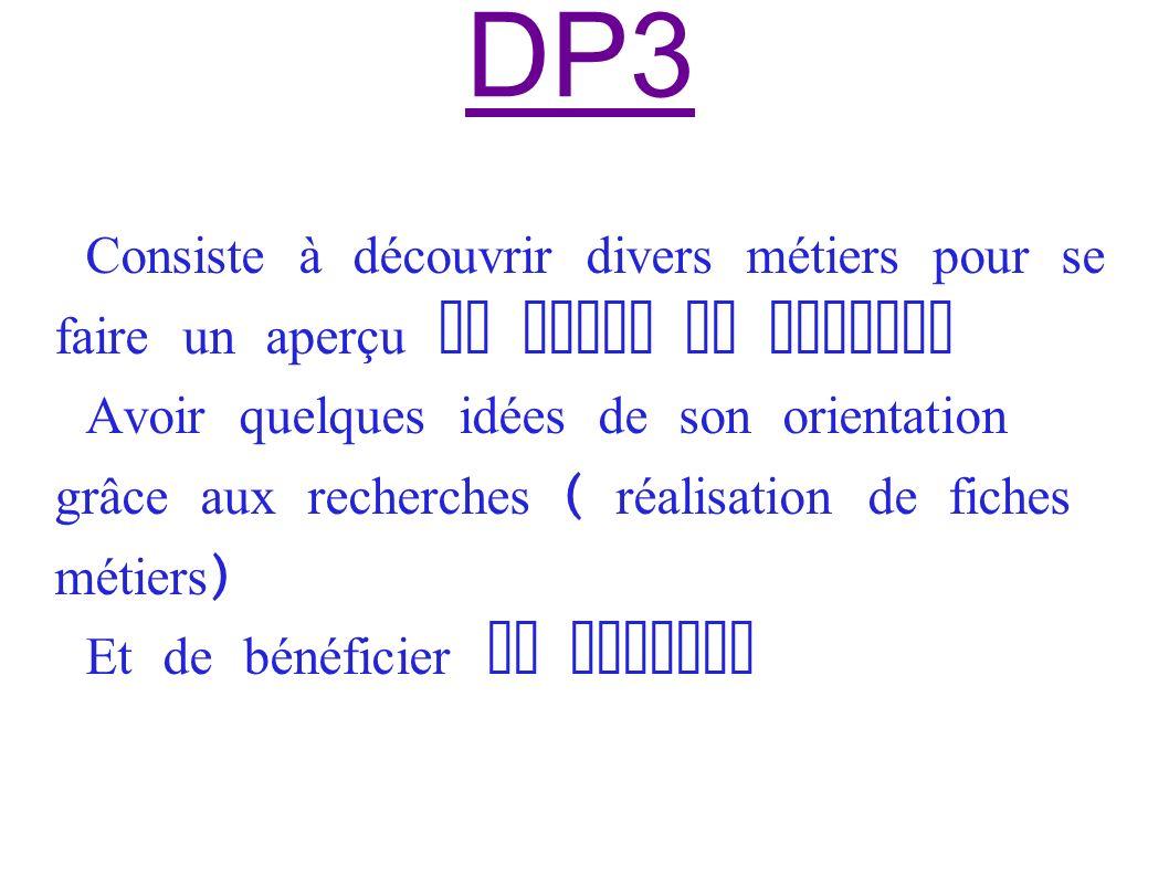 DP3 Consiste à découvrir divers métiers pour se faire un aperçu du monde du travail.