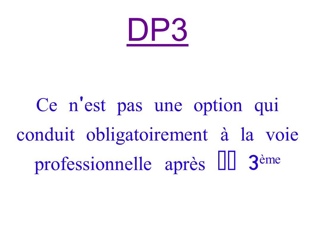DP3 Ce n est pas une option qui conduit obligatoirement à la voie professionnelle après la 3ème