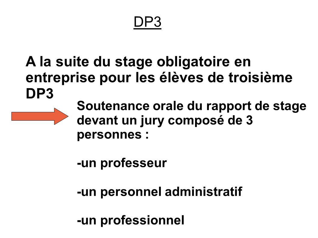 DP3 A la suite du stage obligatoire en entreprise pour les élèves de troisième DP3. Soutenance orale du rapport de stage.