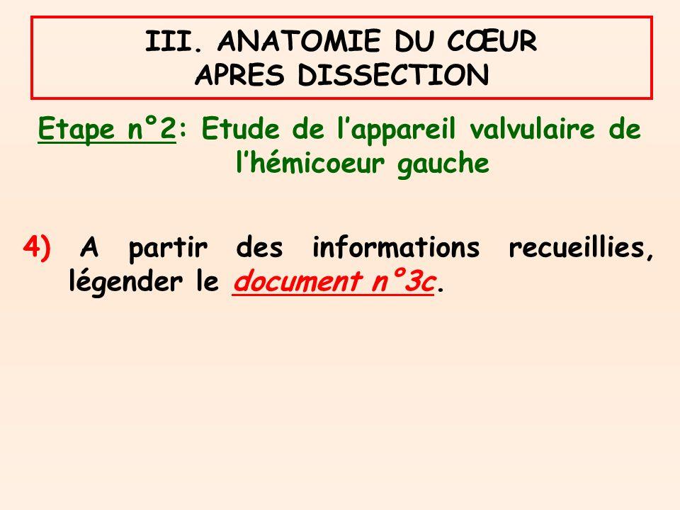 III. ANATOMIE DU CŒUR APRES DISSECTION