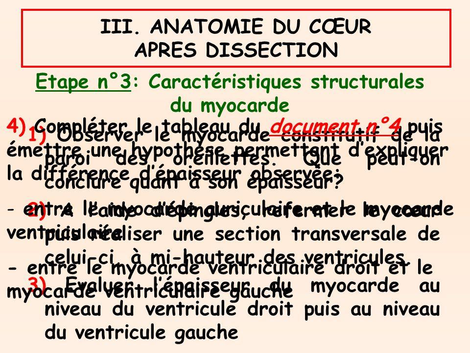 Etape n°3: Caractéristiques structurales du myocarde