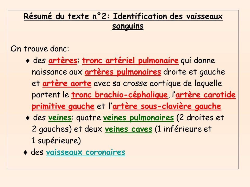 Résumé du texte n°2: Identification des vaisseaux sanguins