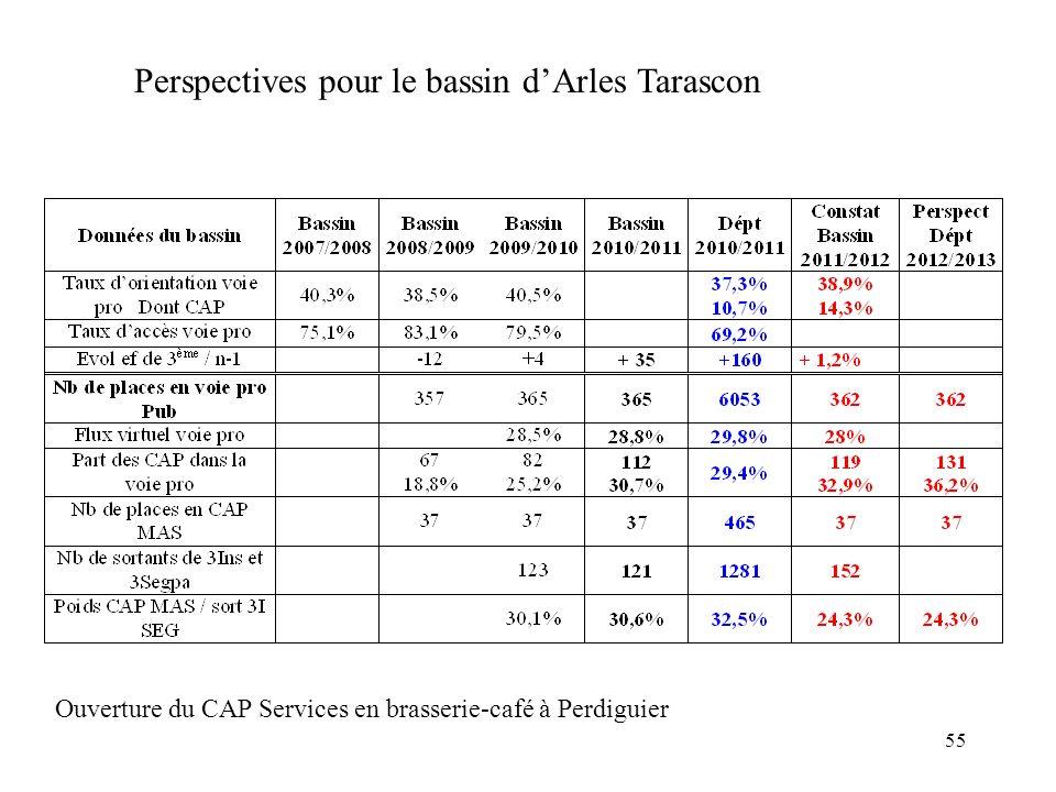 Perspectives pour le bassin d'Arles Tarascon