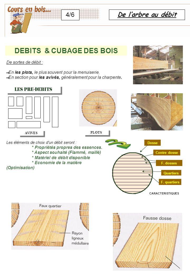 DEBITS & CUBAGE DES BOIS