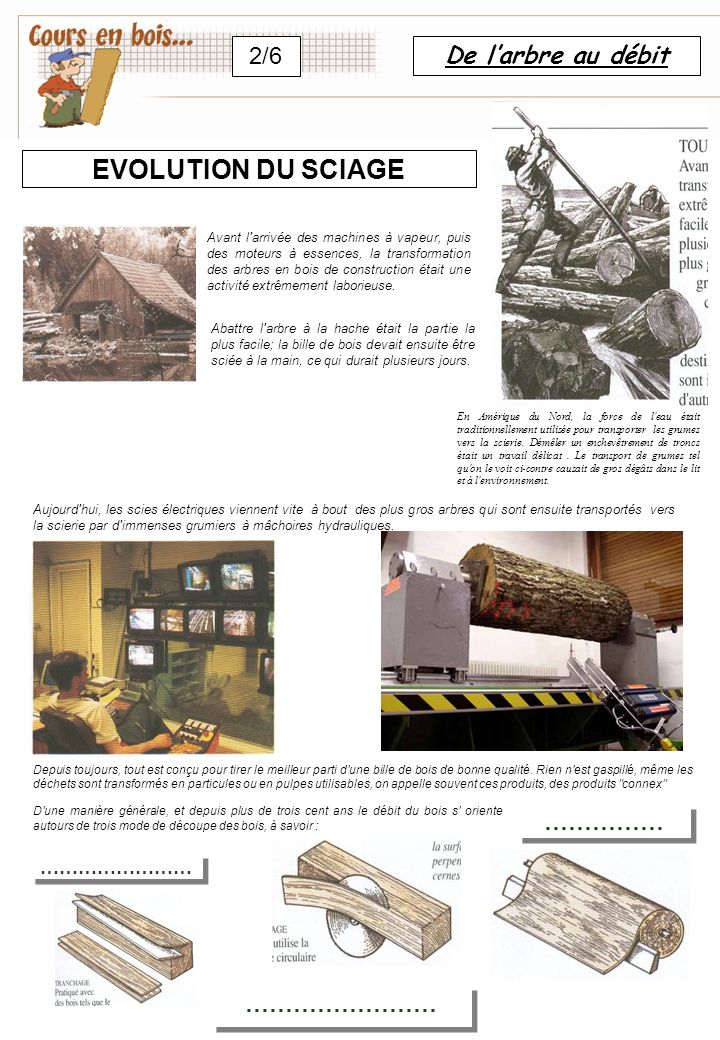 EVOLUTION DU SCIAGE 2/6 De l'arbre au débit …………… …………………… ……………………