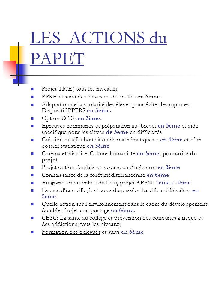LES ACTIONS du PAPET Projet TICE( tous les niveaux)