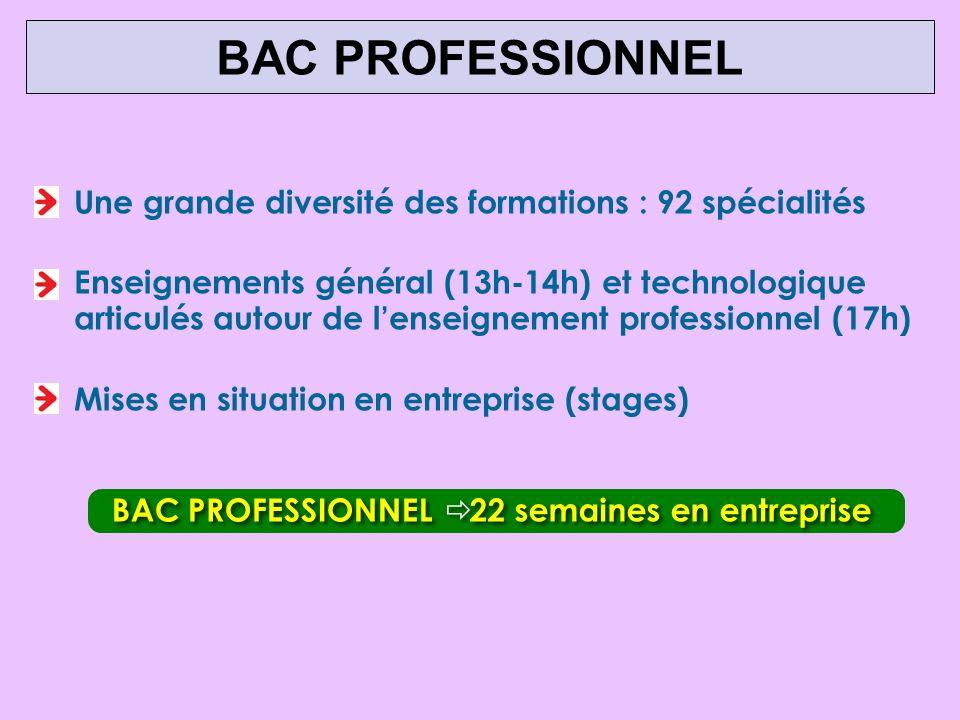 BAC PROFESSIONNEL Une grande diversité des formations : 92 spécialités