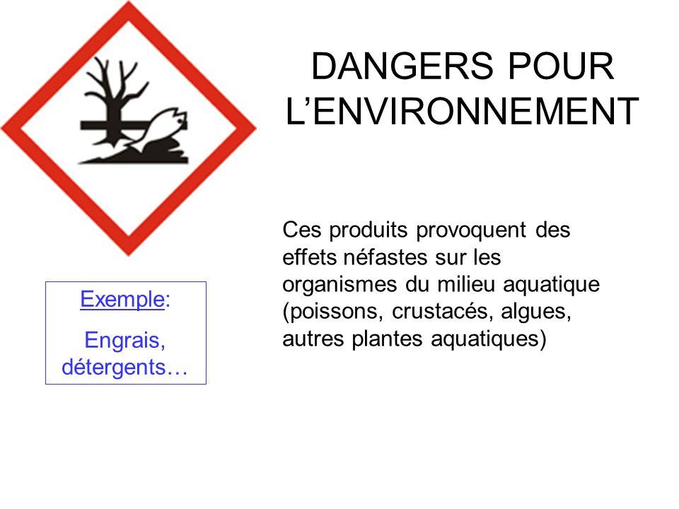 DANGERS POUR L'ENVIRONNEMENT