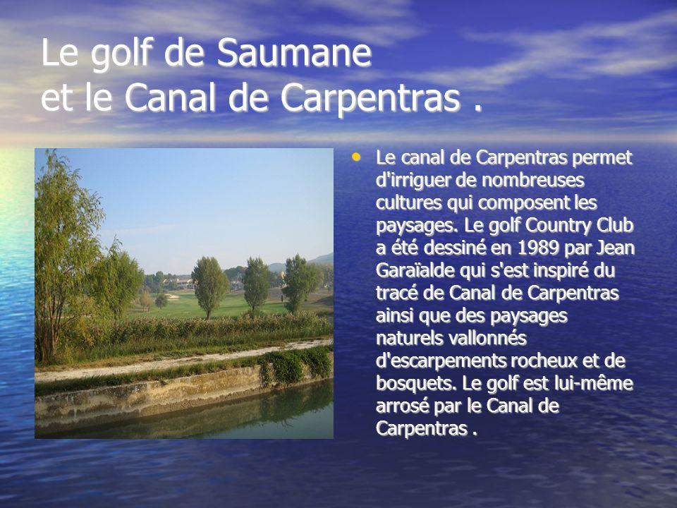 Le golf de Saumane et le Canal de Carpentras .